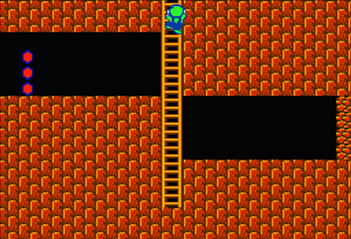 On World 3-2 in Super Mario Bros. 2, to reach the secret shortcut, climb up this ladder.